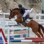 Bermuda Equestrian Federation Jumper Show, November 24 2018-9918