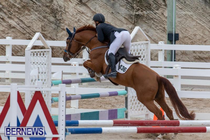Bermuda-Equestrian-Federation-Jumper-Show-November-24-2018-9918