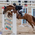 Bermuda Equestrian Federation Jumper Show, November 24 2018-9939