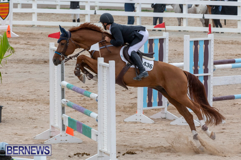 Bermuda-Equestrian-Federation-Jumper-Show-November-24-2018-9939