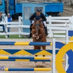 Bermuda Equestrian Federation Jumper Show, November 24 2018-9945