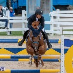 Bermuda Equestrian Federation Jumper Show, November 24 2018-9951