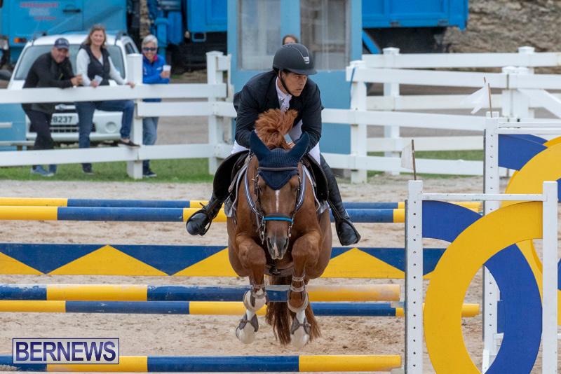 Bermuda-Equestrian-Federation-Jumper-Show-November-24-2018-9951