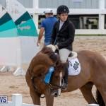 Bermuda Equestrian Federation Jumper Show, November 24 2018-9993