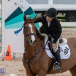Bermuda Equestrian Federation Jumper Show, November 24 2018-9998