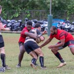 Bermuda Rugby Football Union League, November 24 2018-0488