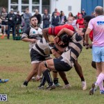 Bermuda Rugby Football Union League, November 24 2018-0509
