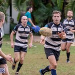 Bermuda Rugby Football Union League, November 24 2018-0578