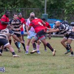 Bermuda Rugby Football Union League, November 24 2018-0596
