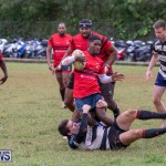 Bermuda Rugby Football Union League, November 24 2018-0639