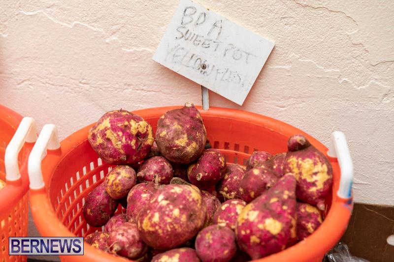 Farmers-Market-Botanical-Gardens-Bermuda-College-November-17-2018-9068