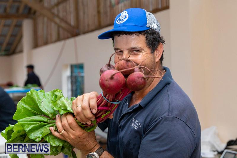 Farmers-Market-Botanical-Gardens-Bermuda-College-November-17-2018-9070