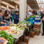 Farmer's Market Botanical Gardens Bermuda College, November 17 2018-9074