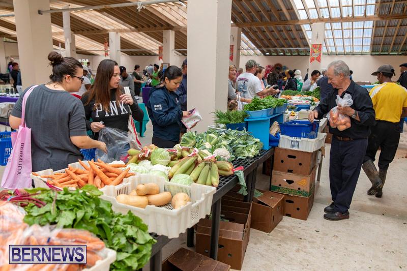 Farmers-Market-Botanical-Gardens-Bermuda-College-November-17-2018-9074