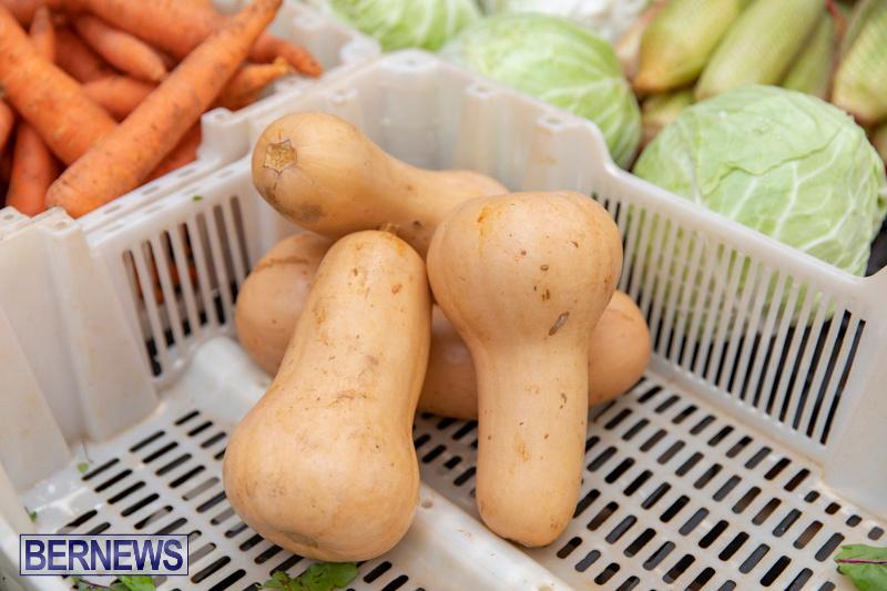 Farmers-Market-Botanical-Gardens-Bermuda-College-November-17-2018-9079