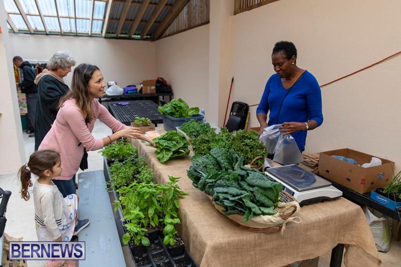 Farmers-Market-Botanical-Gardens-Bermuda-College-November-17-2018-9097