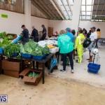 Farmer's Market Botanical Gardens Bermuda College, November 17 2018-9190