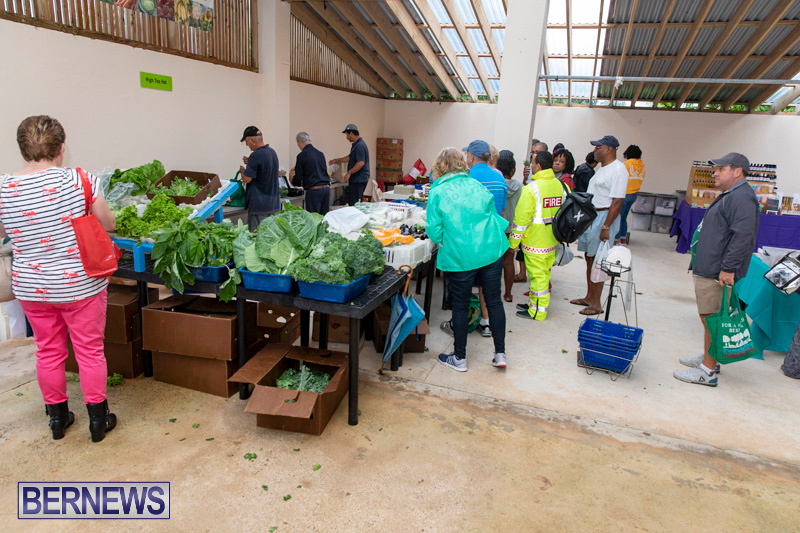 Farmers-Market-Botanical-Gardens-Bermuda-College-November-17-2018-9190