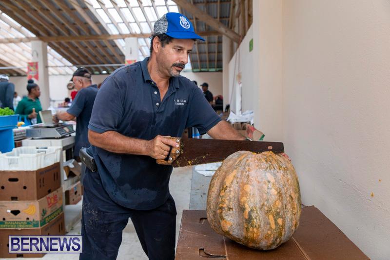 Farmers-Market-Botanical-Gardens-Bermuda-College-November-17-2018-9191