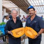 Farmer's Market Botanical Gardens Bermuda College, November 17 2018-9196