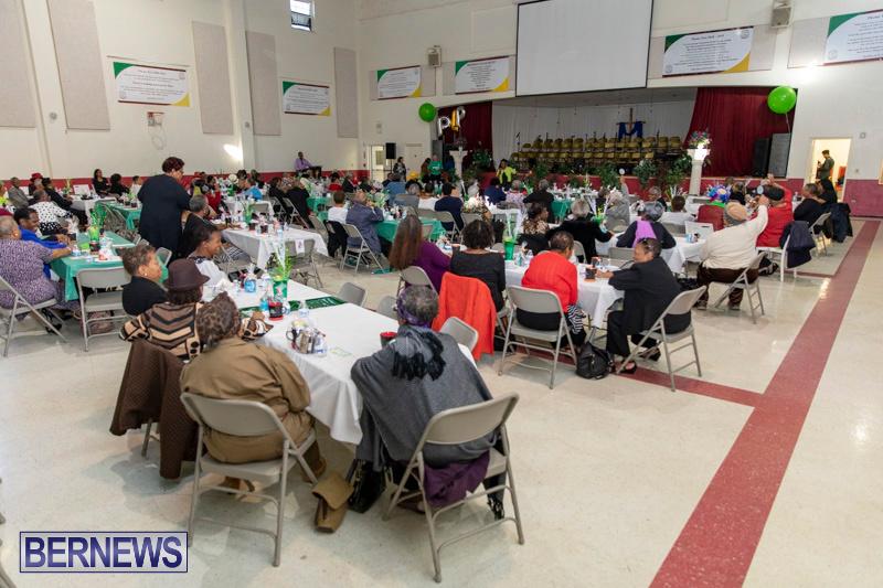 Seniors-Tea-Party-Bermuda-November-25-2018-0781