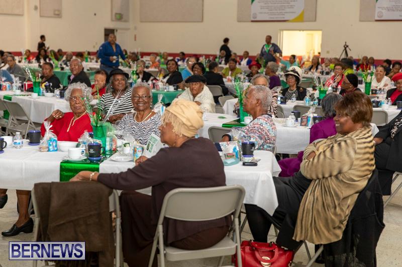 Seniors-Tea-Party-Bermuda-November-25-2018-0793