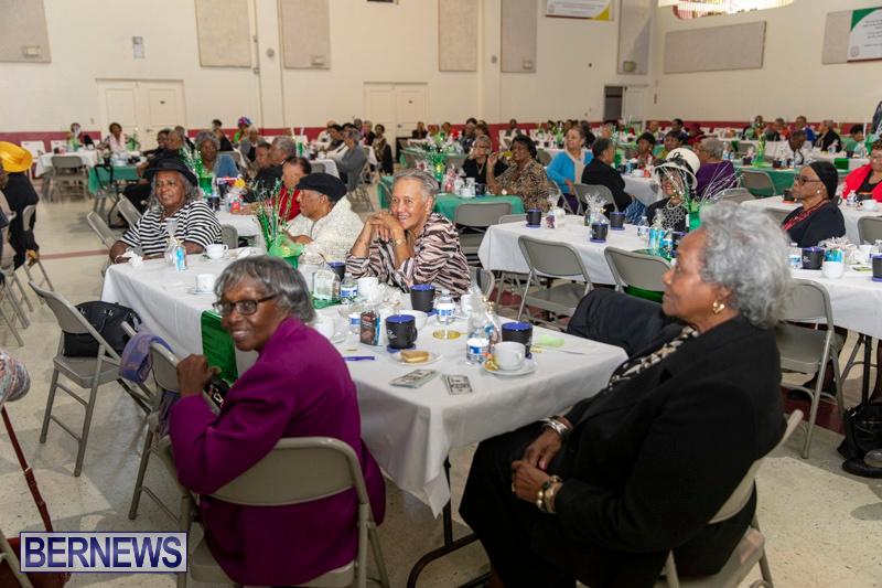 Seniors-Tea-Party-Bermuda-November-25-2018-0795