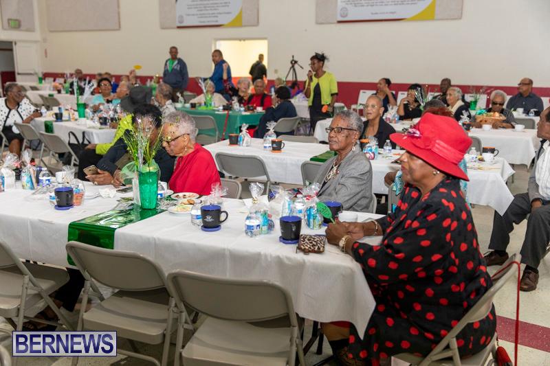 Seniors-Tea-Party-Bermuda-November-25-2018-0798