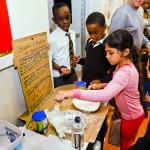 Somerset Primary School Science Fair Bermuda Nov 22 2018 (6)