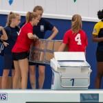 Student Cardboard Boat Challenge Bermuda, November 15 2018-8485