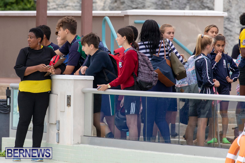 Student-Cardboard-Boat-Challenge-Bermuda-November-15-2018-8502
