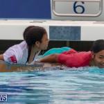 Student Cardboard Boat Challenge Bermuda, November 15 2018-8567
