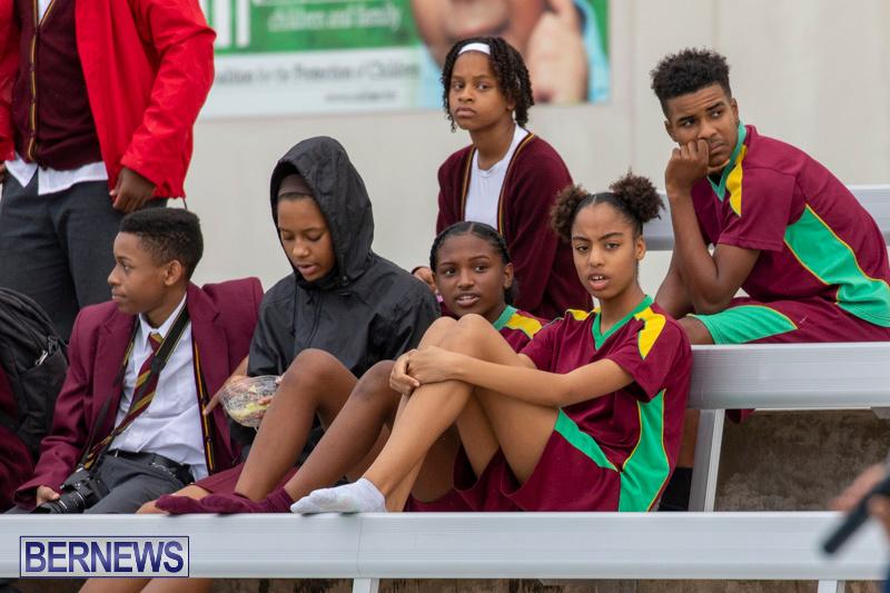 Student-Cardboard-Boat-Challenge-Bermuda-November-15-2018-8598