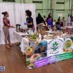 WOMB Female Owned Businesses Market Bermuda, November 28 2018-1426