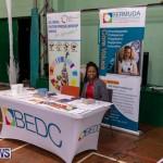 WOMB Female Owned Businesses Market Bermuda, November 28 2018-1443
