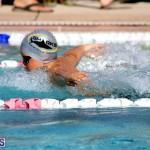 swimming Bermuda Nov 14 2018 (10)