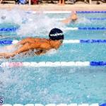 swimming Bermuda Nov 14 2018 (11)