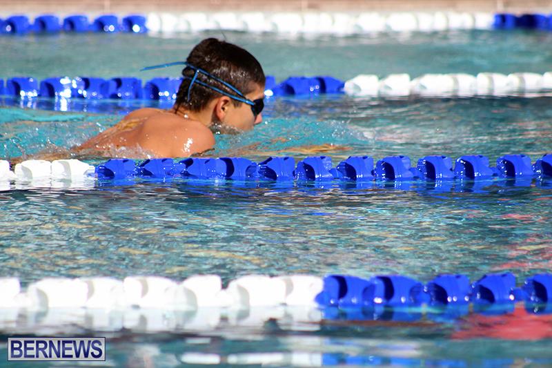 swimming-Bermuda-Nov-14-2018-15