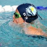 swimming Bermuda Nov 14 2018 (2)