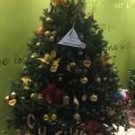 Charity Christmas Tree Bermuda December 2018 (11)