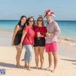 Christmas Day Bermuda at Elbow Bay Beach 2018 DF (1)