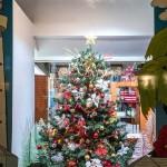 Christmas Lights In Hamilton Bermuda Dec 16 2018 (32)