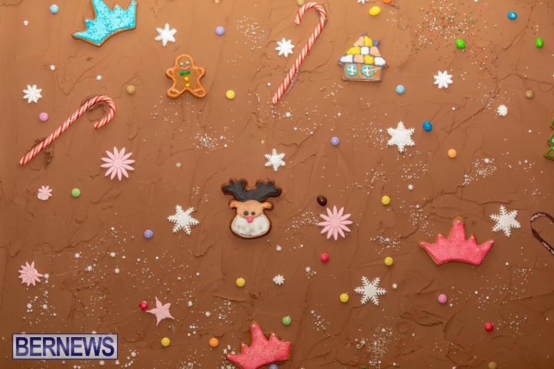 Gingerbread-House-and-Christmas-tree-Hamilton-Princess-Beach-Club-Bermuda-December-3-2018-2999