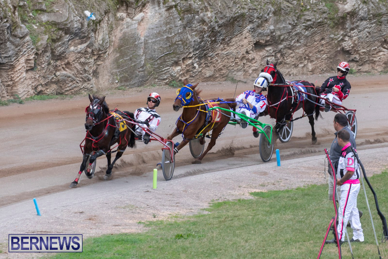 Harness-Pony-Racing-Bermuda-December-26-2018-5985