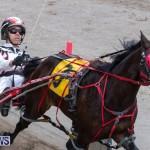 Harness Pony Racing Bermuda, December 26 2018-6004
