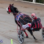 Harness Pony Racing Bermuda, December 26 2018-6012