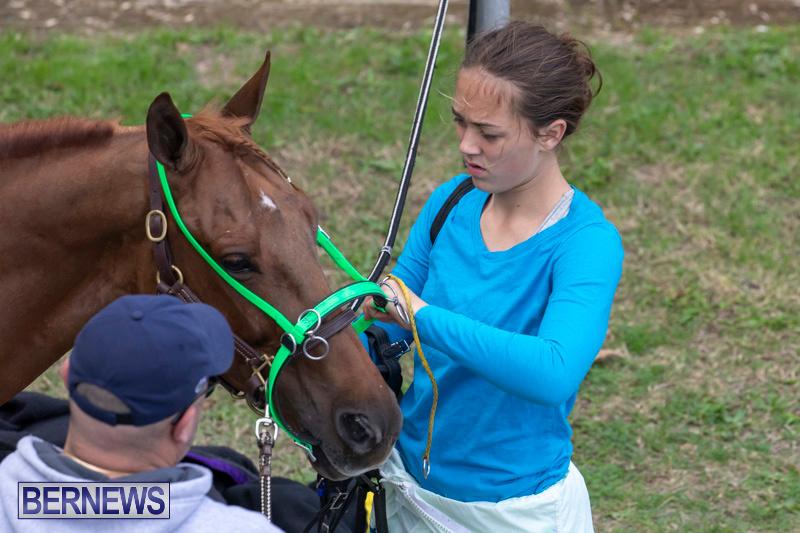 Harness-Pony-Racing-Bermuda-December-26-2018-6042