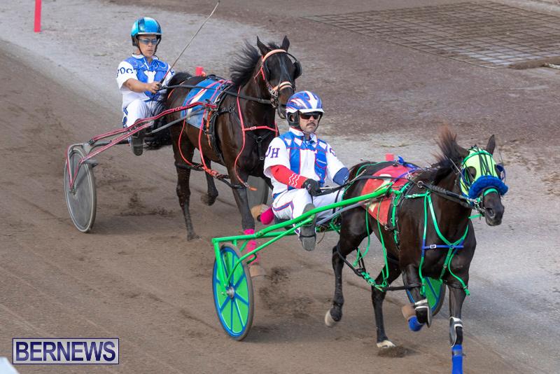 Harness-Pony-Racing-Bermuda-December-26-2018-6061