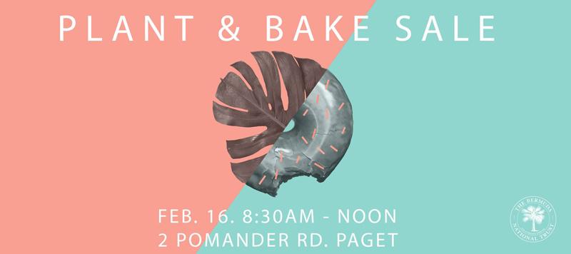 BNT Plant & Bake Sale Bermuda February 2019 (1)
