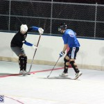 Bermuda Ball Hockey January 23 2019 (6)
